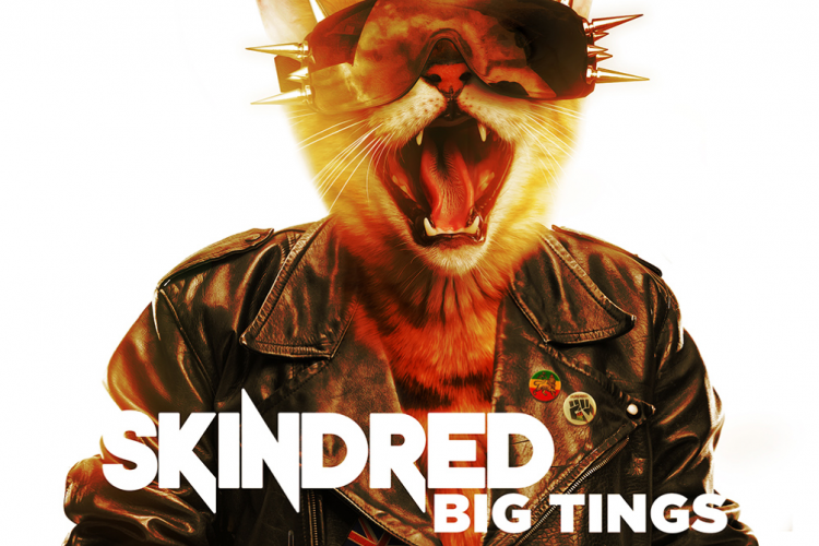 Skindred Big Tings Cover